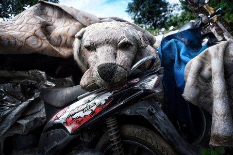 Bonek anjing di atas sepeda motor di tempat penampungan Teluk Pucung, Bekasi Utara, Jawa Barat. Foto: Iqbal Firdaus/kumparan