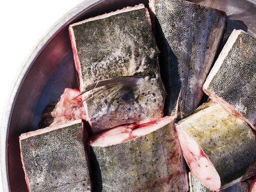 Kobia memiliki nilai ekonomis tinggi, gak salah Jepang salah satu negara mengimpor ikan ini terbesar di dunia, (Ilustrasi/Shutterstock).