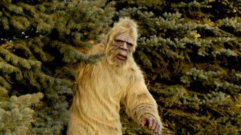 Lolongan Misterius Terekam di Video Viral, Konon Bukti Adanya Monster Hutan Amerika