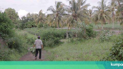 Keterangan Versi Warga Soal Insiden Bentrok dengan TNI di Kebumen