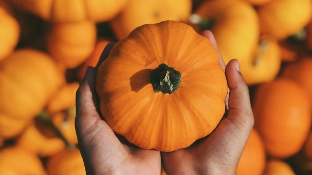Ikon halloween ini ternyata punya banyak manfaat bagi tubuh kala sedang diet. (Foto: unsplash.com)