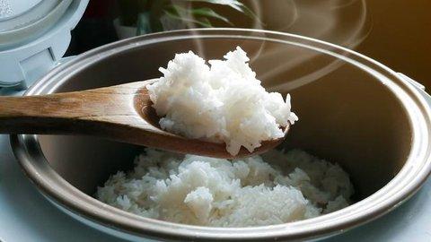 Penyebab Nasi Mudah Basi Ketika Ditanak dengan Rice Cooker